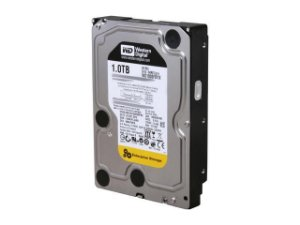 HD 1TB INTERNO 3.5 SATA WESTERN DIGITAL ENTERPRISE - WD1003FBYX