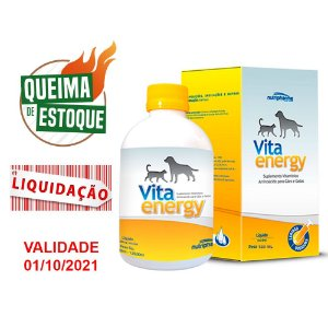 Suplemento Vitamínico Vita Energy 120ml (VAL: 10/21)