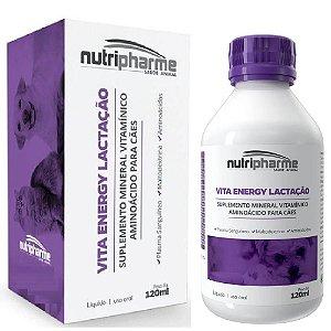 Suplemento Vitamínico Vita Energy Lactação 120ml Nutripharme