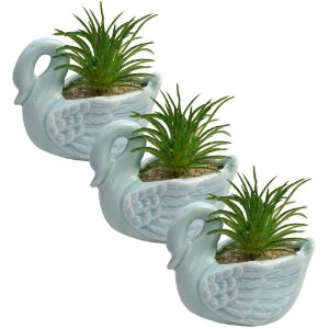 Kit com 3 Mini Vasos Formato de Cisne c/ Plantas Artificiais