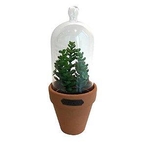 Vaso Com Tampa de Vidro Candelabra Cactus Verde