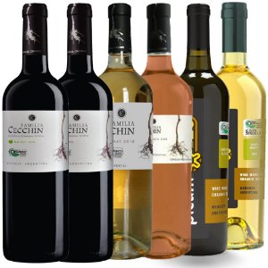 Kit Cecchin Wine Friday