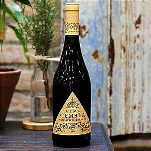 Alma Gemela Monastrell-Bonarda - Onofri Wines
