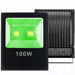 Refletor Led 100W Verde