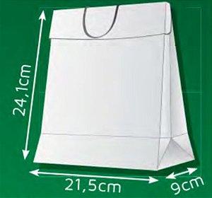 Sacola de Papel DM - (LxAxP) 21,5 x 24,1 x 9 cm com aba de fechamento