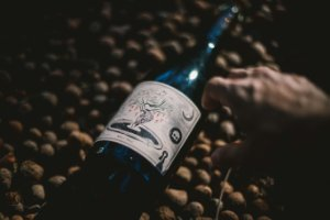 Vinhas do Tempo, Chardonnay - 2020