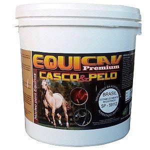 Equicav Premium Casco & Pelo