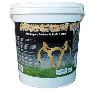 Phoscav 120 Probiótico