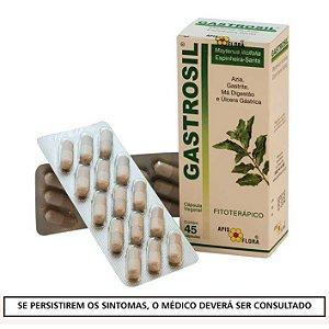 GASTROSIL - ESPINHEIRA SANTA 45 CÁPSULAS 380MG - APIS FLORA
