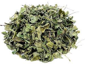 Chá de moringa folhas 100g