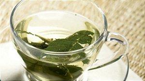 Chá de espinheira santa 100g