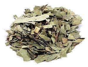 Chá de folha de eucalipto 100g