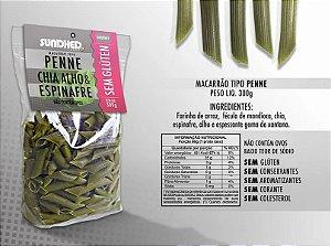 Macarrão tipo penne de chia, alho e espinafre