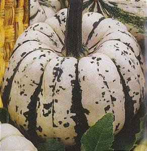 Sementes de Abóbora Sweet Dumpling Winter: 7 Sementes