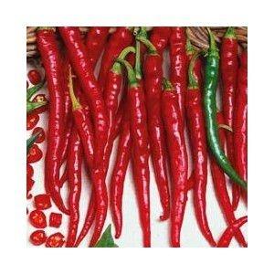 Sementes de Pimenta Cayenne: 40 Sementes