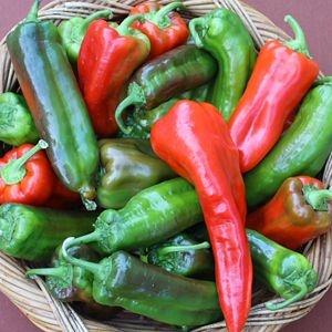 Sementes de Pimenta Doce Italiana: 20 Sementes