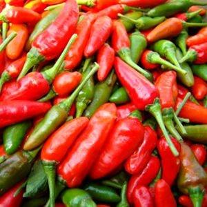 Sementes de Pimenta Malagueta: 60 Sementes