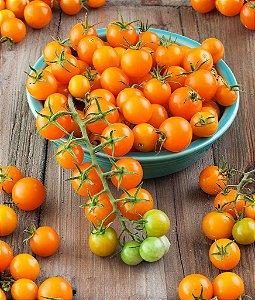 Sementes de Tomate Cereja Laranja: 20 Sementes