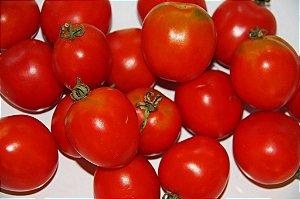 Sementes de Tomate Siberiano: 20 Sementes