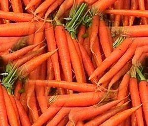 Sementes de Cenoura Comprida: 100 Sementes