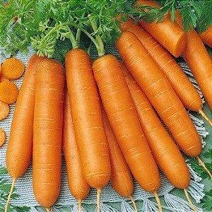 Sementes de Cenoura Grande: 100 Sementes