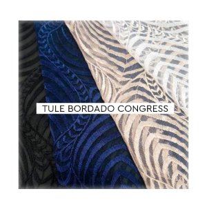 Tule Bordado Congress