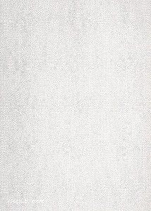 Papel de Parede Liso Off White
