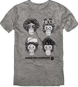 Camiseta T-Shirt Menino Monkeys Mescla 02 ao 08