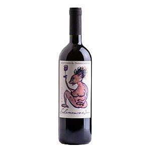 Routhier & Darricarrère Vinho Tinto Salamanca do Jarau Cabernet Sauvignon 2016