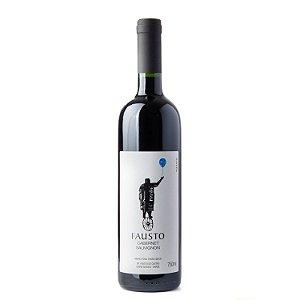 Pizzato Vinho Tinto Fausto Cabernet Sauvignon 2020