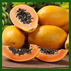 Mamão Papaia - Unidade