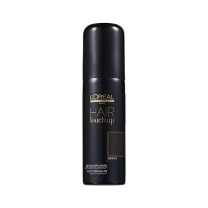 L'Oréal Pro Touch Up Brown 75ml