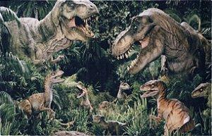 Tapete Infantil 0,80 X 1,25 Dinossauros