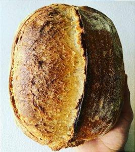 Pão de Fermentação Natural - Panificio Tartaruga