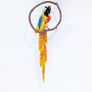 Pássaro no galho / arara-canindé
