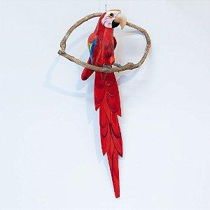 Pássaro no galho / arara-vermelha