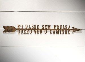 """FLECHA DE FERRO """"EU PASSO SEM..."""""""