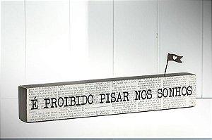 """BLOCO DE PALAVRAS """"É PROIBIDO..."""""""