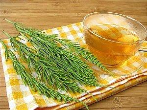 Chá Cavalinha 20g