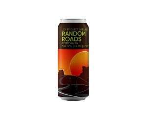 Cerveja Joy Random Roads IPA 473ml