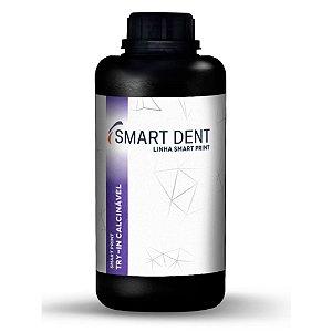 Resina 3D Smart Print Try-In Calcinável