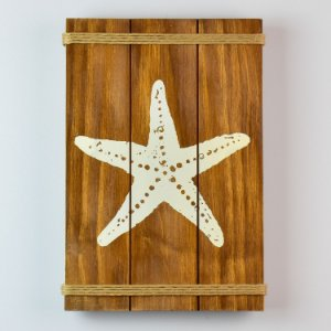 Quadro Estrela 35 cm