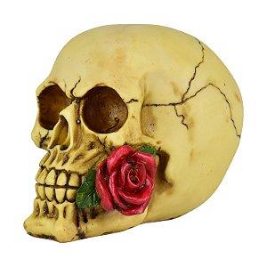 Caveira Decorativa com Rosa