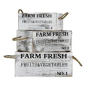 Conjunto Caixa Farm Fresh