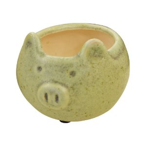 Vaso Porco