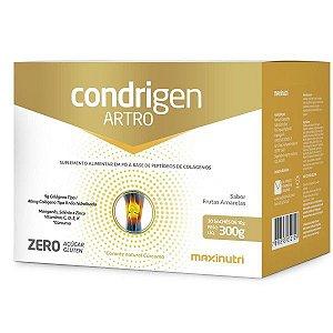 Condrigen Artro 300 Gramas