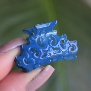 Piranha de cabelo pequena francesa Finestra azul N457Blue