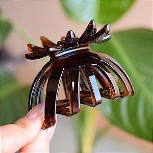 Piranha de cabelo francesa Finestra marrom N487