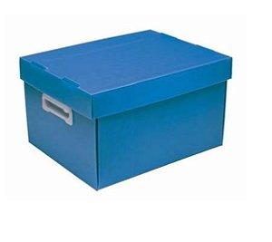 Caixa Organizadora Box Novaonda Grande C/Pegador Azul Polibras