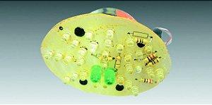 Lâmpada LED Oval (2 Pólos) com LEDs para Lanterna Traseira 90208020